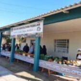 FEIRA DA AGRICULTURA FAMILIAR JÁ É REALIDADE EM UNISTALDA